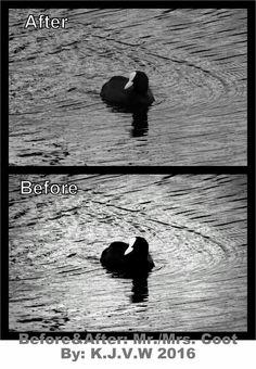 https://flic.kr/p/FbBkZD | Before & After: 8