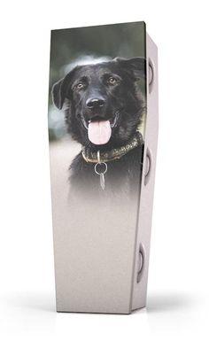 Dutch Funeral Design - Coffin Animals - Dieren - Buddy Dog