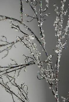 How to make iced branches, or ice anything for winter