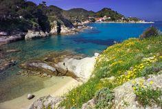 #Sant'Andrea #elba island