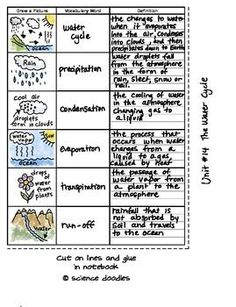 FREE Interactive Notebook Water Cycle Vocabulary Set by Science and Math Doodles Science Vocabulary, Science Resources, Science Lessons, Science Education, Science Activities, Physical Science, Vocabulary Notebook, Science Ideas, Water Cycle Activities