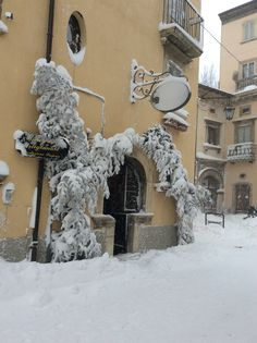 Frozen door
