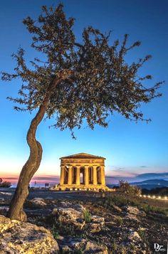 Ordina direttamente a casa da www.gustodelsapore.it Italy Travel Informations sur notre site https://storelatina.com/italy/travelling #Italyrecipes #Italytravel #viajemitalia #recetasItaly