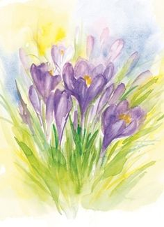 {Crocuses were the 1st sign of spring in my childhood. } Krokussen, Marjan van Zeyl
