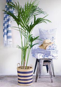 Wohnideen für dein Zuhause von GreenGate * Wohnaccessoires in Blau und Weiß * Flechtkorb als alternativer Blumentopf