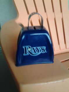 Rays Baseball with my Rays Cowbell
