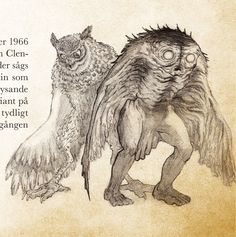 Owlman and mothman Weird Creatures, Fantasy Creatures, Mythical Creatures, Academic Drawing, Strange Beasts, Mothman, Fantasy Monster, Cryptozoology, Creature Concept