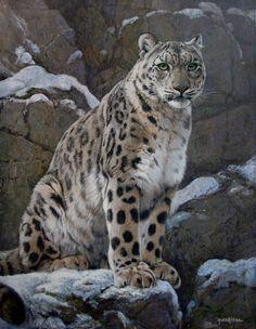 Snow leopard painting by Gabriel Hermida