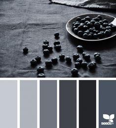 Berry Tones | Design Seeds
