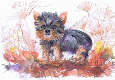 DOG watercolor  painting  dog wall decor  Yorkshire  by ValrArt