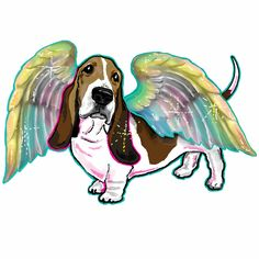 Basset Angel