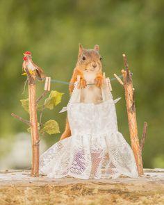 wedding dress by Geert Weggen on 500px