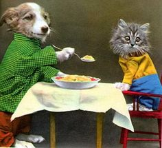 eat up little kitty! (I had a book of these little dressed up animals when I was little!)