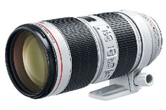 Shop Canon EF IS III USM Optical Telephoto Zoom Lens for DSLRs at Best Buy. Find low everyday prices and buy online for delivery or in-store pick-up. Dslr Photography Tips, Photography Equipment, Portrait Photography, Canon Lens, Mark Ii, Telephoto Zoom Lens, Optical Image, Digital Slr, Canon Digital