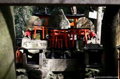 Realm Of The Foxes, Fushimi-Inari Shrine, Kyoto - Halcyon Realms - Art Book Reviews - Anime, Manga, Film, Photography