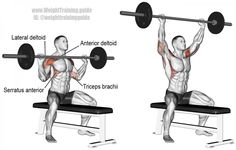 Seated barbell overhead press