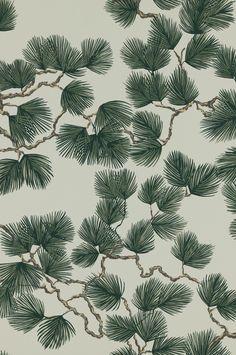 Pine by Sandberg - Green - Wallpaper : Wallpaper Direct