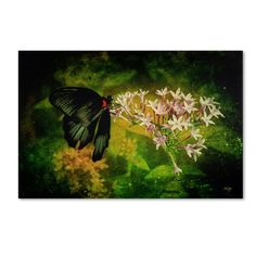 Fairyland by Lois Bryan Photographic Print on Gallery Wrapped Canvas