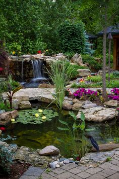 Below are the Backyard Ponds Water Garden Landscaping Ideas. This article about Backyard Ponds Water Garden Landscaping Ideas was posted Backyard Garden Design, Ponds Backyard, Koi Ponds, Garden Ponds, Backyard Waterfalls, Ponds With Waterfalls, Oasis Backyard, Sloped Backyard, Backyard Plants