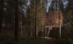 Bird's Nest room at Sweden's Tree Hotel
