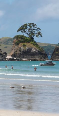 Spread it around - New Zealand has INCREDIBLE beaches!