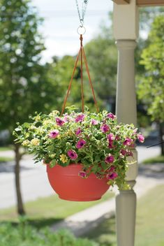 Self-watering hanging baskets for plants and flowers help to reduce your watering chores with a patented dual-action wick system. Gardener's Supply.