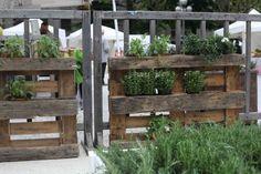 Pr Sentoir Plantes Vertes Pinterest Meubles Cactus Et Balcons