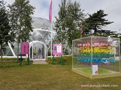 Visitors to the RHS Hampton Court Palace Flower Show 2017 can experience exotic butterflies from Asia, Americas and other exotic climates, inside the Butterfly Dome. Hampton Court Flower Show, Rhs Hampton Court, Palace, Butterflies, Exotic, Tropical, Pumpkin, Outdoor Structures, Flowers