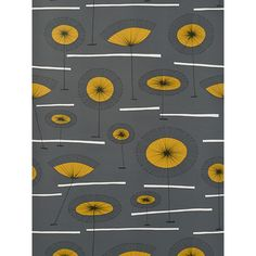 Buy MissPrint Grasslands Wallpaper   John Lewis