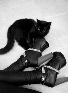 Nu-Goth Fashion Tip Nº 22: Nu Goth girl with Black cat - http://ninjacosmico.com/22-fashion-tips-nu-goth/