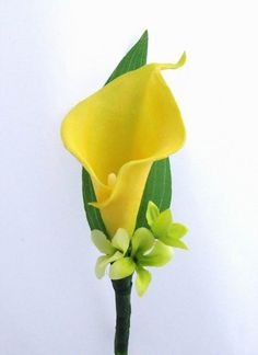 Google Image Result for http://www.debbiecoflowers.com/images/NaturalTouchBoutonniereYellowCallaGreenr.JPG