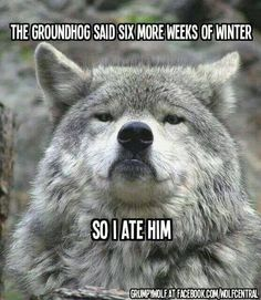 The groundhog said 6 more weeks of winter