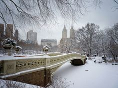 Bow Bridge in the snow. Central Park winter. New York City.