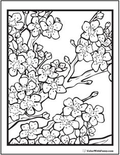 cherry tree blossom coloring page quilts applique inspirations