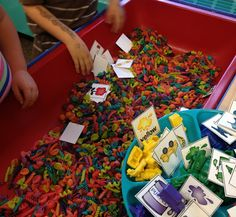 A Differentiated Kindergarten: Sorting sensory table using colored pasta