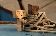 A Danbo photo by Anita Russell. Ropes