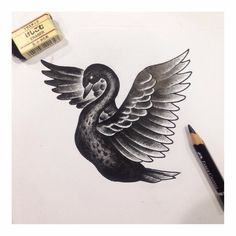 """#taipei #tattoo #tattoos #ink #art #artwork #sketch #flash #bird #swan #animal #swantattoo #blackswan #black #blackworkers #fly #needleno8tattoo"""