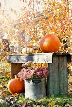 310 Best Shabby Chic Autumn Images In 2019 Fall Decor