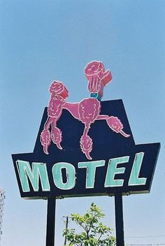sign Pink Poodle Motel vintage neon sign - This is in Australia. Hopefully it is dog-friendly and still exists!Pink Poodle Motel vintage neon sign - This is in Australia. Hopefully it is dog-friendly and still exists! Kitsch, Gato Animal, French Poodles, Standard Poodles, Vintage Magazine, Vintage Neon Signs, Pink Poodle, Roadside Attractions, Roadside Signs