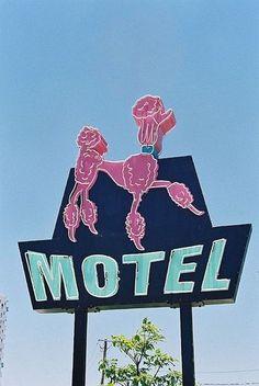 Pink Poodle Motel
