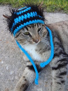 Custom Cat Dog Hat Costume - The Wackadoodle Hat for Cats and Small Dogs