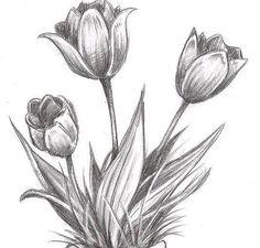 Amazing Beautiful Flower Drawings, Pencil Drawings Of Flowers, Flower Art Drawing, Pencil Sketch Drawing, Pencil Shading, Dark Art Drawings, Floral Drawing, Art Drawings For Kids, Pencil Art Drawings