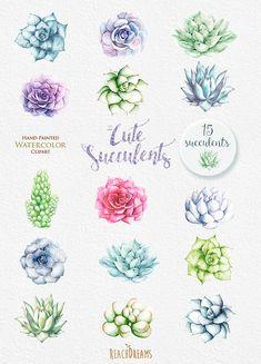 Watercolor Succulents Clipart. Wedding diy от ReachDreams на Etsy