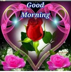 Good Morning Wednesday Images Greetings Picture For Whatsapp Good Morning Roses, Good Morning Wednesday, Good Morning Gif, Good Morning Picture, Good Morning Greetings, Happy Saturday, Night Pictures, Morning Pictures, Morning Pics
