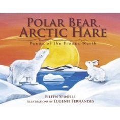1000+ images about Polar on Pinterest | Arctic animals, Polar bears and Continents