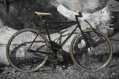 Maxwell EP0 Electric Bike
