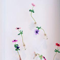 cute flowers in Amsterdam via designlovefest
