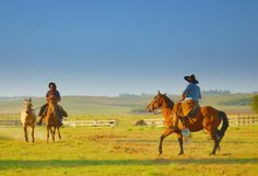 Pampa, Land of the Gaucho (Argentijnse cowboy ) - Argentina