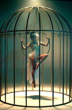 Burlesque, I hope and think. Aerial Dance, Aerial Hoop, Aerial Arts, Aerial Silks, Dark Circus, Circus Art, Circus Theme, The Circus, Circus Show