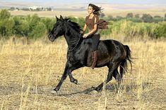 Kenzie Dysli mit Pferd